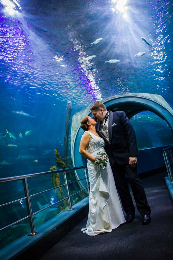 Aquarium-Wedding