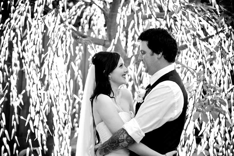 bram-leigh-bride-groom-light-tree