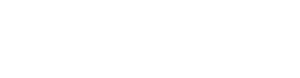 Wedding-shots-Web-Logo